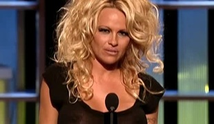 Pamela Anderson in Comedy Central Roast Be advantageous to Pamela Anderson Plenary (2005)